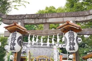 埼玉県川越市の熊野神社の写真素材 [FYI03150402]
