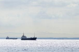 東京湾の写真素材 [FYI03150455]