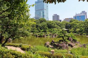 大阪・天王寺公園の日本庭園の写真素材 [FYI03150711]