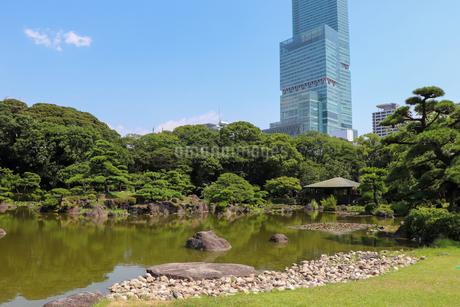 天王寺公園・慶沢園とあべのハルカスの写真素材 [FYI03150714]