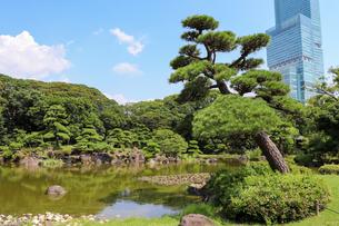 大阪・天王寺公園の慶沢園の写真素材 [FYI03150717]