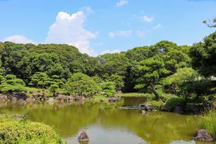 緑あふれる夏の慶沢園の写真素材 [FYI03150719]
