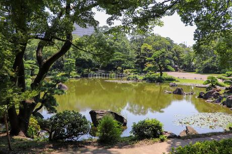 林泉回遊式の日本庭園・慶沢園の写真素材 [FYI03150726]
