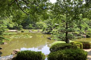 緑豊かな回遊式の日本庭園の写真素材 [FYI03150727]