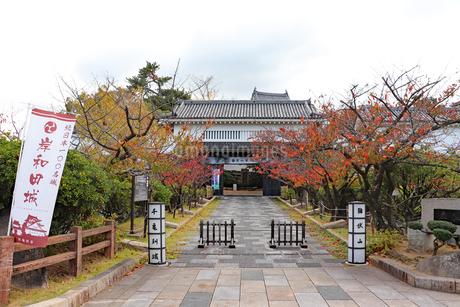 秋の岸和田城の写真素材 [FYI03150826]
