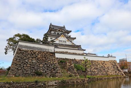 岸和田城の写真素材 [FYI03150828]
