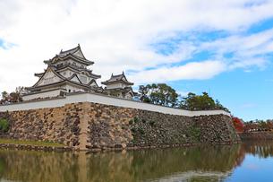 水堀に囲まれた岸和田城の写真素材 [FYI03150835]