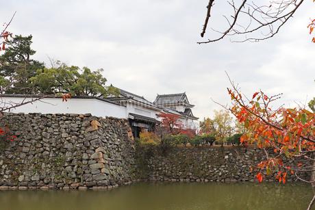 お城と紅葉の写真素材 [FYI03150838]