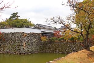 秋のお城の写真素材 [FYI03150839]