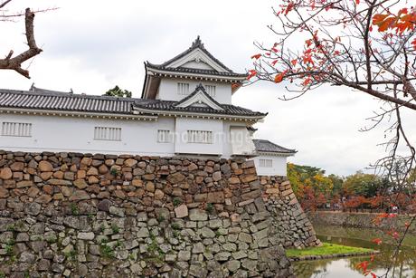 秋のお城の写真素材 [FYI03150840]