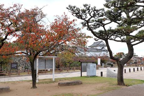 秋のお城の写真素材 [FYI03150847]