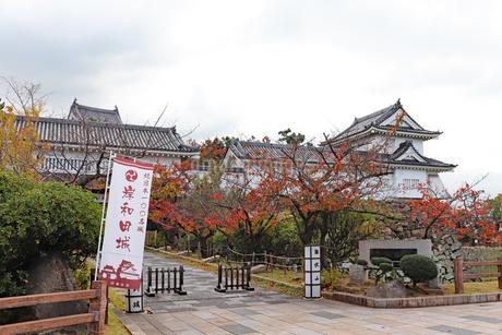秋の岸和田城の写真素材 [FYI03150849]