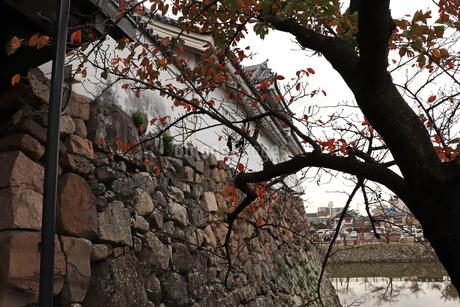 秋のお城の写真素材 [FYI03150854]