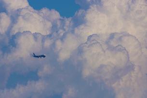飛行機と入道雲の写真素材 [FYI03150865]