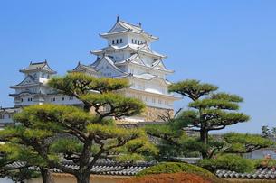 姫路城の連立天守群の写真素材 [FYI03150937]