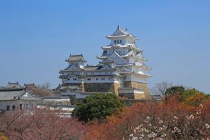 姫路城の連立天守群の写真素材 [FYI03150939]