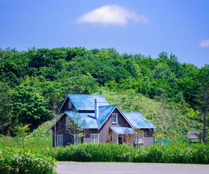 北海道 自然 風景 北の桜守りパークの写真素材 [FYI03150987]