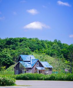 北海道 自然 風景 北の桜守りパークの写真素材 [FYI03150989]