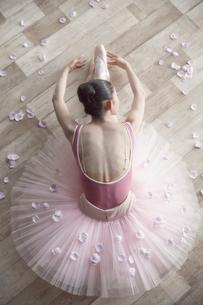 床で前屈をするバレリーナと花びらの写真素材 [FYI03151087]