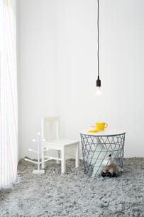 白壁とグレー絨毯の子供部屋の写真素材 [FYI03151207]