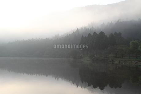 早朝の余呉湖の写真素材 [FYI03151217]