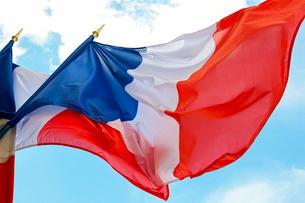 フランス国旗の写真素材 [FYI03151430]