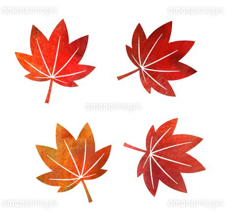 秋の紅葉アイコン(水彩色鉛筆)のイラスト素材 [FYI03151734]