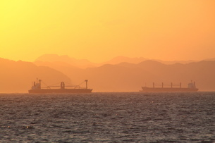 東京湾の朝の写真素材 [FYI03151889]