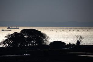 東京湾 釣り船の写真素材 [FYI03151892]