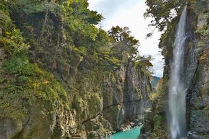 紅葉した秋の手取峡谷を流れる綿ヶ滝の写真素材 [FYI03151971]
