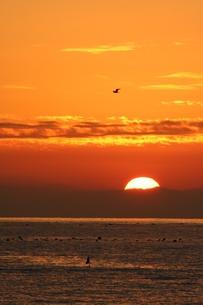 日の入り 三浦半島の写真素材 [FYI03152015]