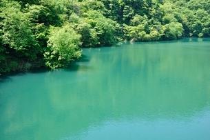 新緑の石小屋湖の写真素材 [FYI03152201]