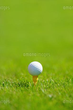 ゴルフボールの写真素材 [FYI03152324]