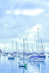 ニューカレドニア・ヌメアのオルフェリナ湾に浮かぶ沢山のヨット等の船舶の写真素材 [FYI03152635]