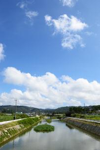 沖縄の田舎の川と橋の写真素材 [FYI03152767]
