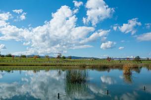 公園の池に映る秋の青空の写真素材 [FYI03152779]