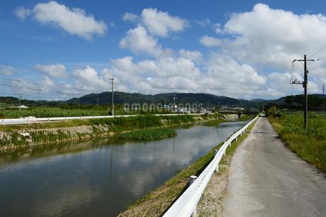 沖縄の田舎の川沿いの道と橋の写真素材 [FYI03152804]