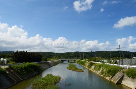沖縄の田舎の川と橋の写真素材 [FYI03152810]