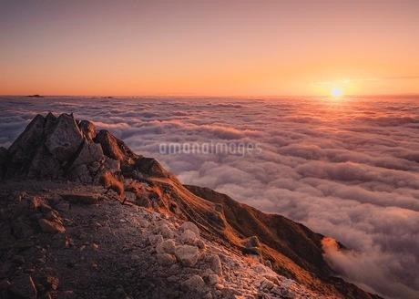 唐松岳 の写真素材 [FYI03153087]