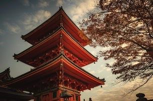 清水寺 日本 京都府 京都市の写真素材 [FYI03153095]