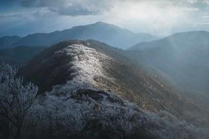 塔ノ岳 日本 神奈川県 山北町の写真素材 [FYI03153100]