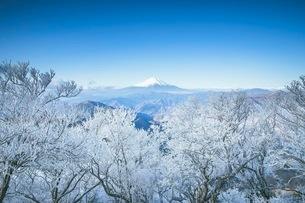 山 雪 風景の写真素材 [FYI03153101]