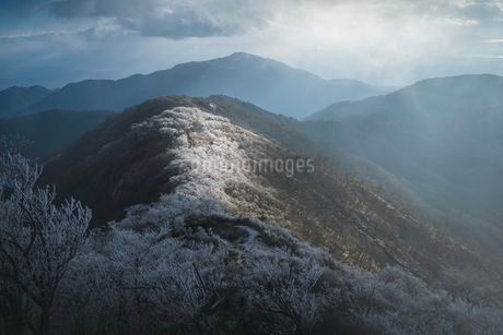 山 風景の写真素材 [FYI03153104]