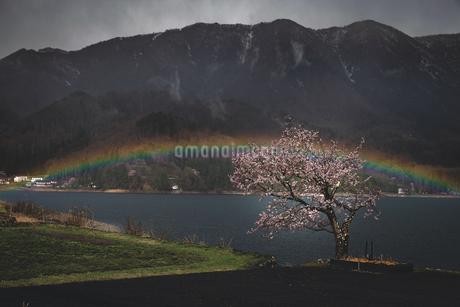 青木湖 日本 長野県 大町市の写真素材 [FYI03153179]