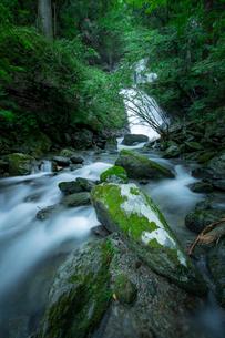滝 風景の写真素材 [FYI03153196]