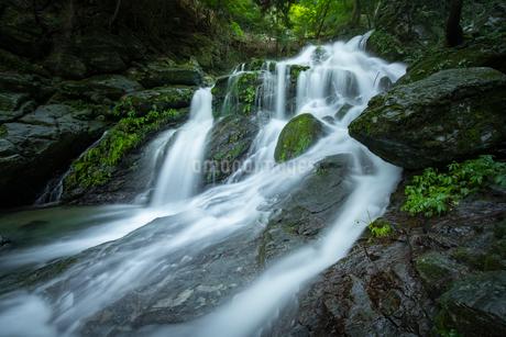 滝 風景の写真素材 [FYI03153198]