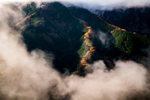 ナメゴ谷 日本 奈良県 上北山村の写真素材 [FYI03153214]