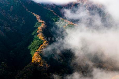 ナメゴ谷 日本 奈良県 上北山村の写真素材 [FYI03153215]