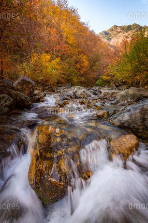 川 風景の写真素材 [FYI03153217]