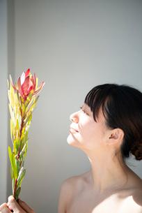 花を持っている女性のビューティーイメージの写真素材 [FYI03153232]